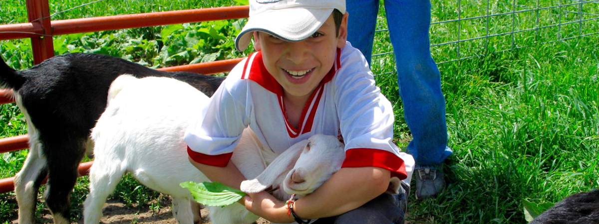 Illinois Farm to School Toolkit