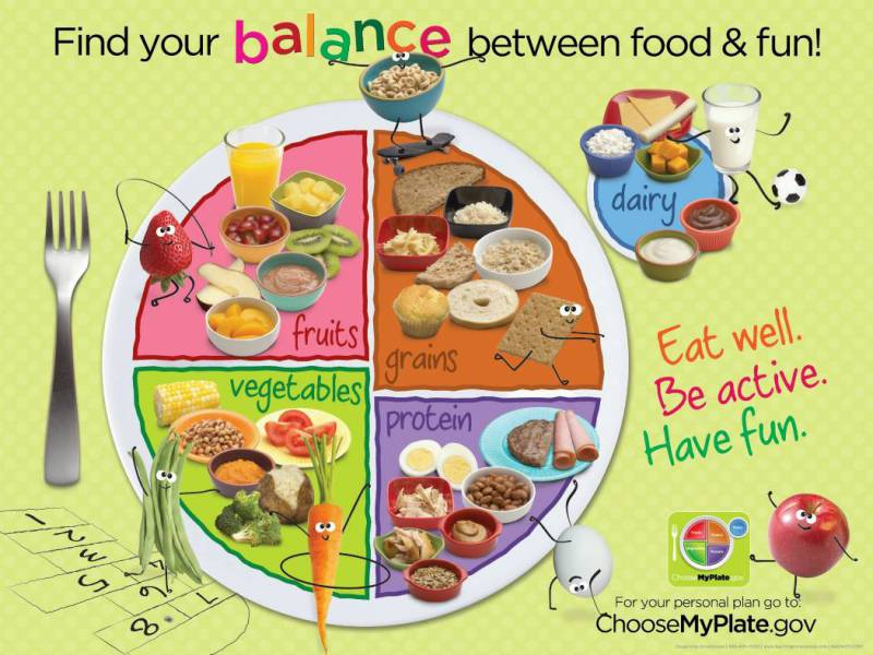 artwork-charts-posters-1431629-learning-zonexpress-banner-usda-kids-myplate-9